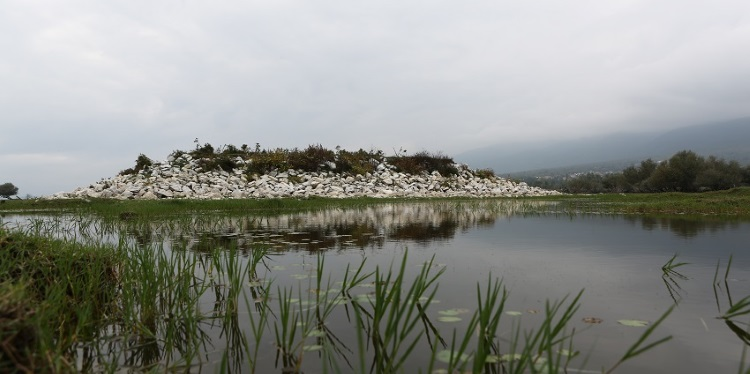 Protecting and upgrading the National Park of Lake Kerkini